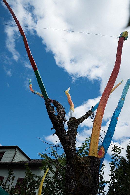 Garten Farben Freunden Fest